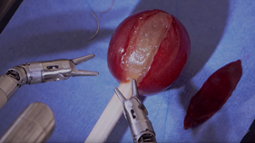 da Vinci Surgical System Stitches a Grape Back Together